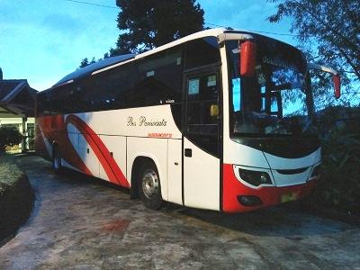 Sewa Bus Termurah 081398117366/WA